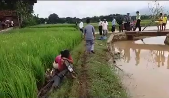 razia motor di sawah